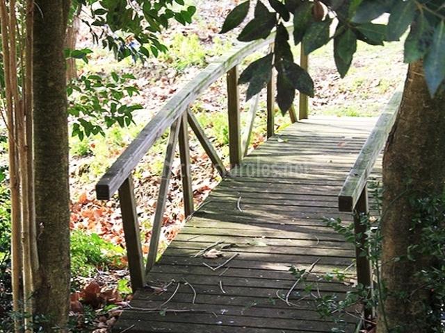 Jardín con naturaleza y pasarela