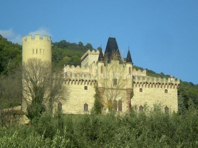Castillo de Can Bori