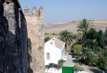 Castillo de las Aguzaderas - El Coronil, Sevilla