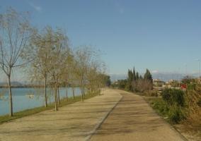 Zona del paseo en Deltebre