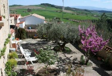 El Olivo de Sansol - Sansol, Navarra