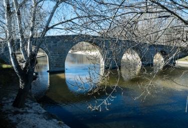 Zona natural con el puente