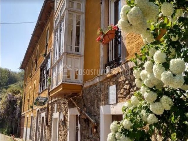 Acceso al alojamiento con plantas de colores