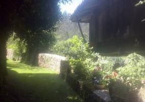 Vistas de los jardines con plantas en el exterior