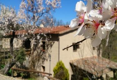 Casa rural Valdolázaro - Los Navalucillos, Toledo