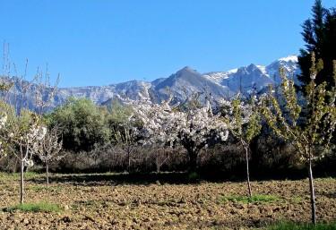 Lar del Cuco - Madrigal De La Vera, Cáceres