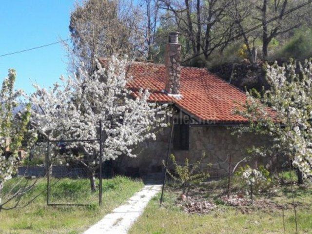 El cerezal del jerte en navaconcejo c ceres - Casas rurales en el jerte con piscina ...