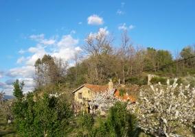 La casa entre cerezos