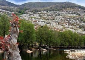 Zona del entorno de Navaconcejo