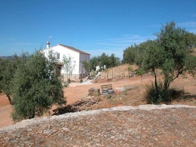 Solana del castillo en alanis sevilla - Hosteria casa adriano alanis de la sierra sevilla ...