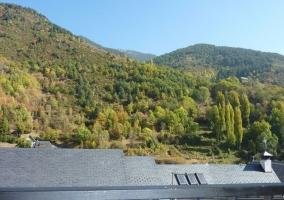 Vistas desde el alojamiento de las zonas verdes
