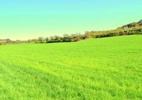 Zonas naturales en nuestro entorno