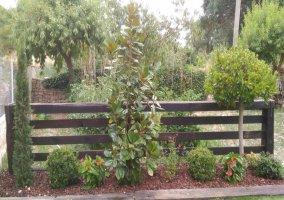 Plantas Jardín