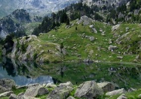 Zonas verdes naturales