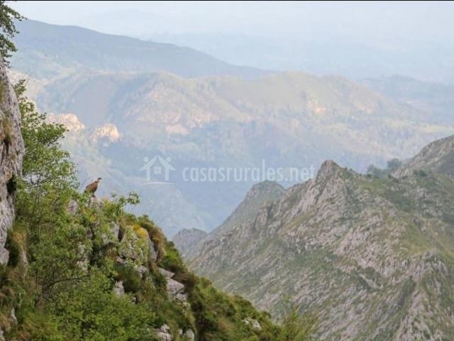 Zonas naturales con buenas vistas