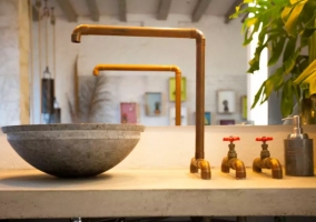Aseo de la casa con elementos naturales en los sanitarios
