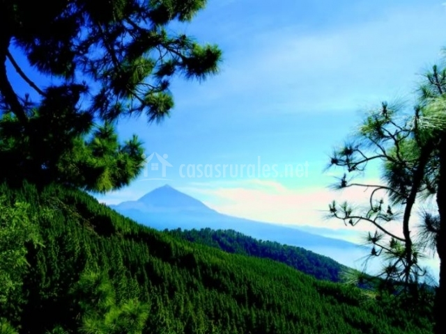 Zona de montes