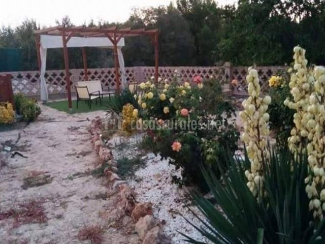 Vistas de las zonas exteriores con plantas