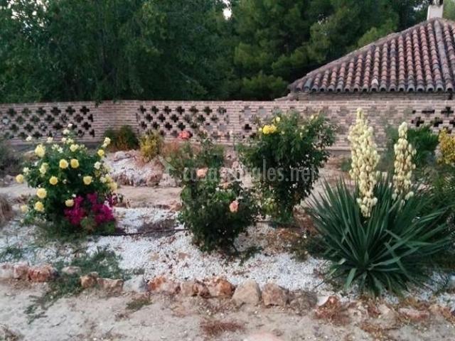Vistas de los exteriores con plantas de colores