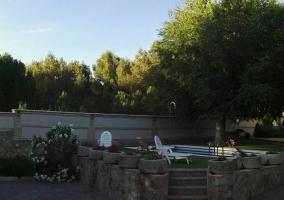 Vistas de las zonas verdes en los alrededores con la piscina