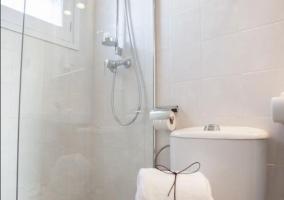 Aseo de la casa con una ducha y mampara en cristal
