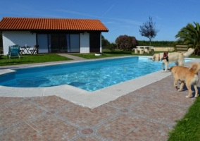 Jardín junto a la piscina