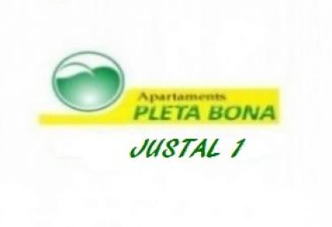 Apartamentos Pleta Bona- Justal 1 - Taull, Lleida
