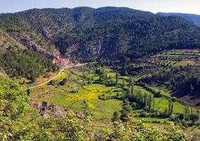 Zonas verdes del entorno