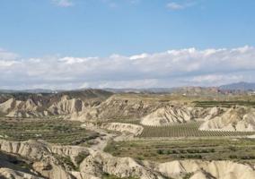 Zona con paisajes