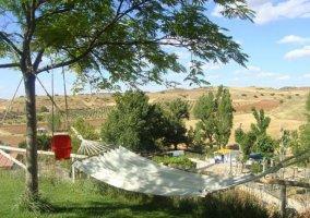 Vistas de las zonas verdes con hamacas