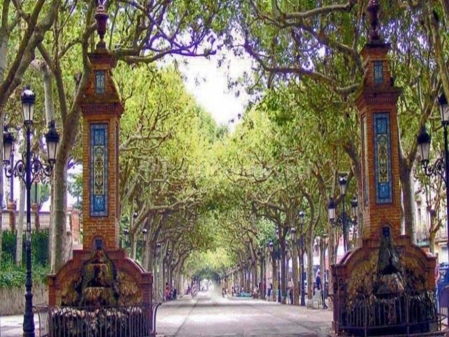 Paseo de la capital