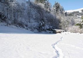 El entorno en invierno