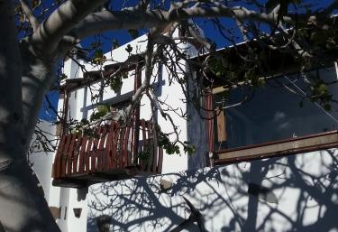 Gofio - Maguez, Lanzarote