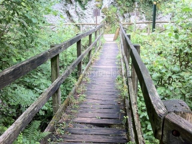Puente en la Ruta del Alba