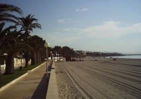 Zona natural de la playa