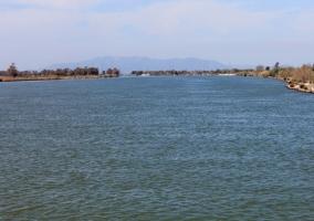 Humedal del Delta del Ebro