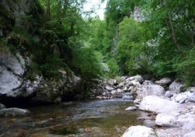 Foz del río Ponga