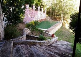 Estanque en el jardín
