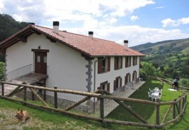 Lesakenea I  - Pueblo Leiza/leitza, Navarra