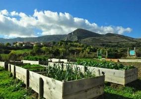 Entorno granja escuela huerta