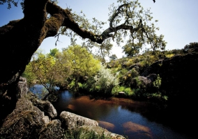 El Parque Nacional de Cornalvo