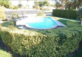Vistas de la piscina en los jardines