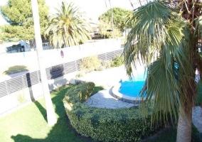 Vistas de los jardines con palmera