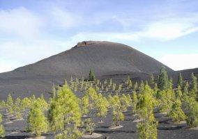 Entorno volcán Chinyero