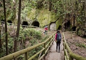 Entorno bosque Agua García