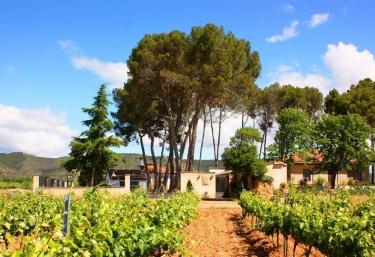 Casa Rural Entreviñedos del Somontano - Salas Bajas, Huesca
