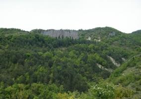 Zona de paisajes verdes