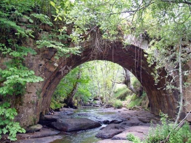 Zona del Puente Rojadillo