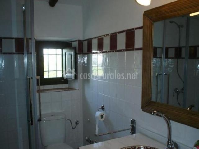 Aseo de la casa con la ducha en esquina y espejo