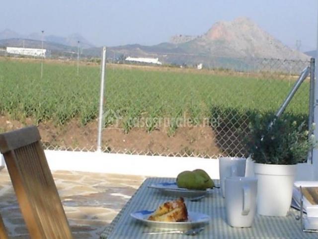 Vistas de la terraza con las zonas verdes